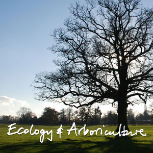 ecology-and-aboriculture